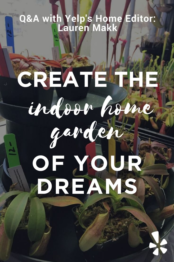 10 best lauren makks favorites images on pinterest learn how to make the indoor home garden of your dreams today thanks to malvernweather Images
