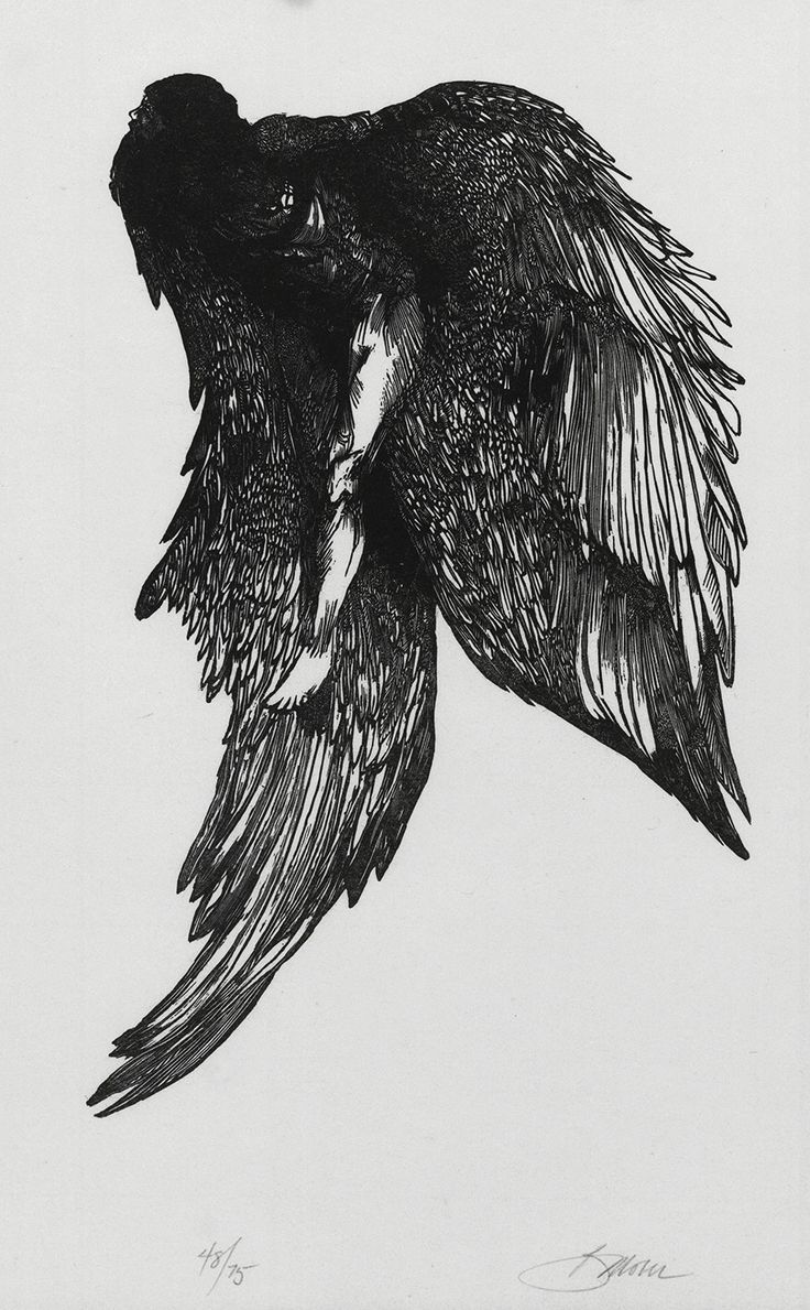 Pin lovi poe for tattoo pictures to pin on pinterest on pinterest - Printmaker Artist Barry Moser Icarus Gonistes Wood Engraving 11 X Inches Edition Of 75 1970 Find This Pin