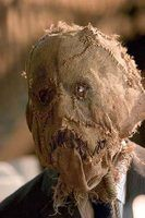 "The burlap mask made famous by the Scarecrow character in ""Batman Begins"""