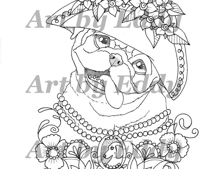 36 best Art of Pug images on Pinterest  Coloring books Pugs and
