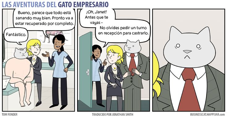 Business Cat - Arreglado