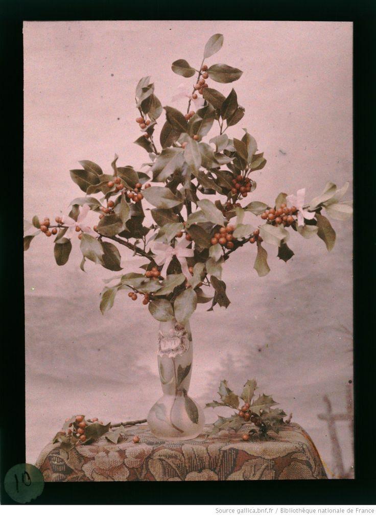 [Bouquet de houx dans un vase art nouveau] | E. Blondelet | 1907 - 1920 | National Library Of France | Public Domain