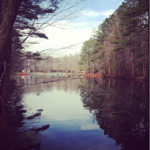 Great place for a Sunday hike. Northwest River Park in Chesapeake, Virginia. www.seventothirty.com