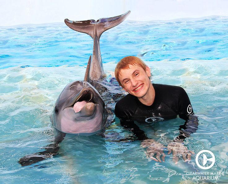 Nathan Gamble, who starred as Sawyer in Dolphin Tale and ...