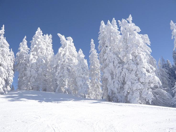 Wintersport Fieberbrunn!:)