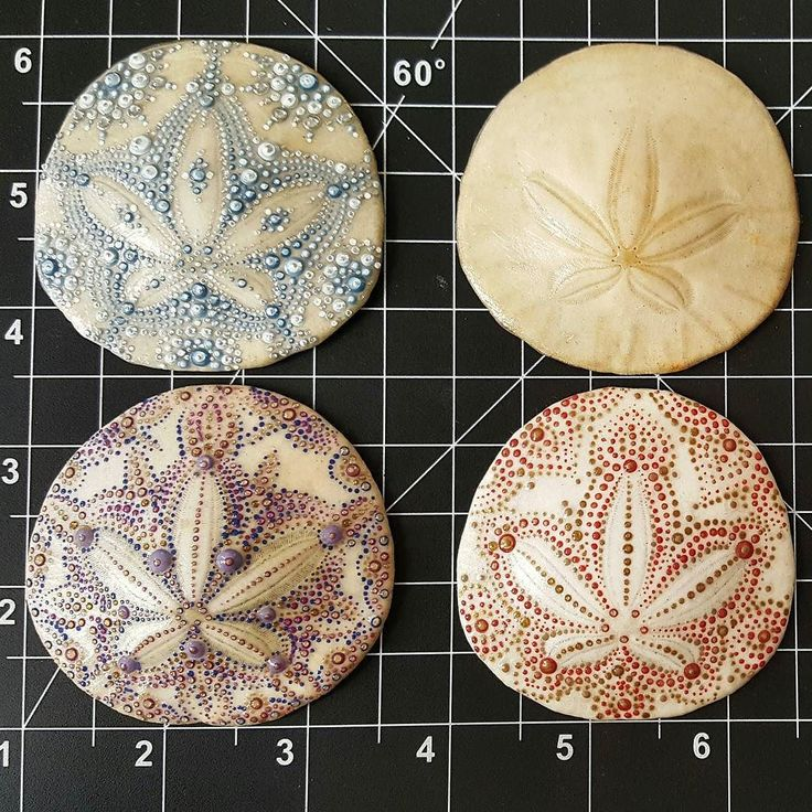 sand dollar craft ideas 25 best ideas about painted sand dollars on 5361