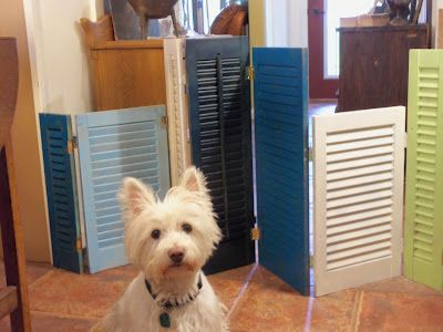 Re-purposed vintage shutters hinged into a dog gate....See @Maria Henderson Maser ? We can just paint the gates and put hinges on them. Or we can buy some old shutters and make our own.