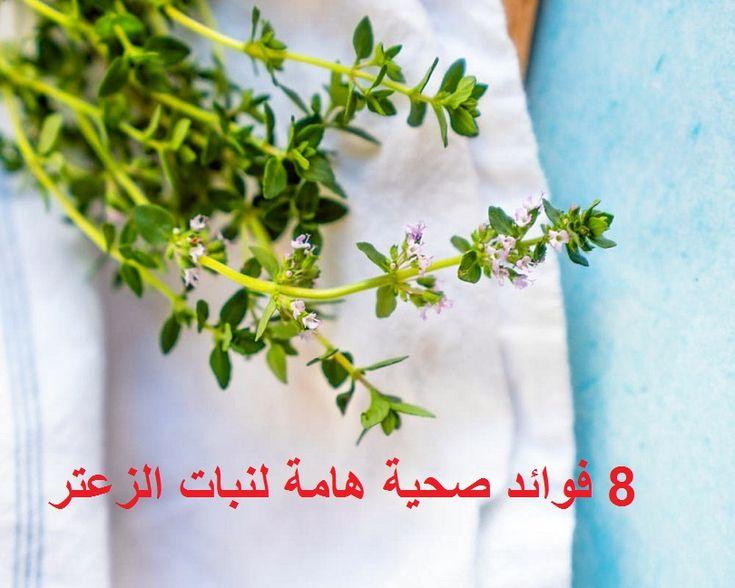 الزعتر من النباتات العشبية شديدة الأهمية منذ قديم الزمان استخدم في عملية التحنيط من قبل المصريين القدماء وكان الرومان يستعملونه مع الماء In 2021 Herbs Parsley Thyme
