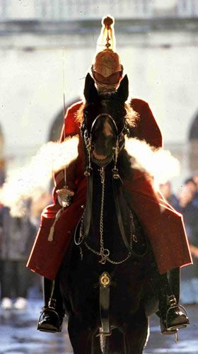 The HouseHold Cavalry Museum Website