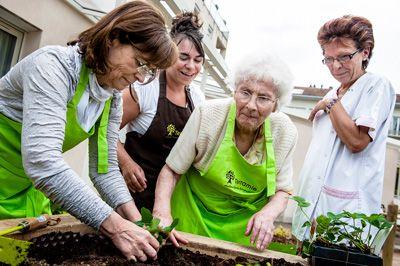Découvrez les jardins thérapeutiques www.santecool.net
