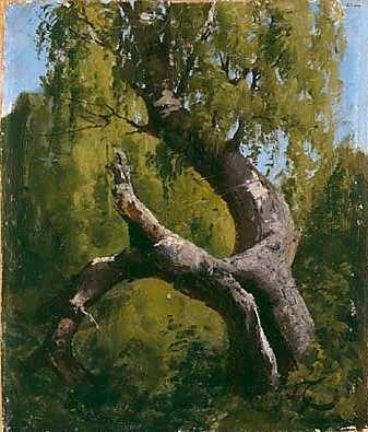 FANNY CHURBERG (Finnish artist) The Old Birch