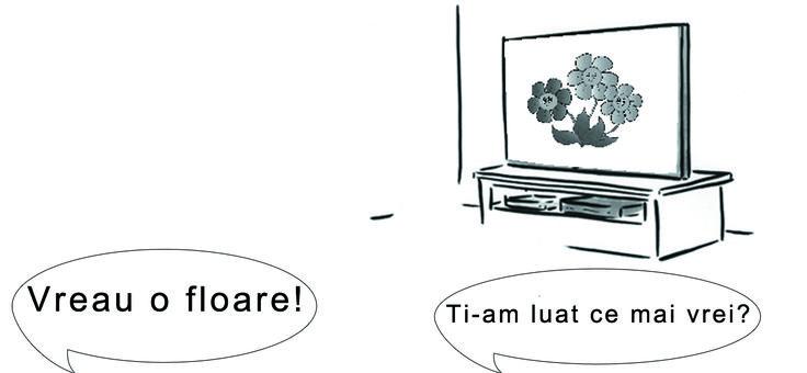Cum folosesc televizorul in realitate