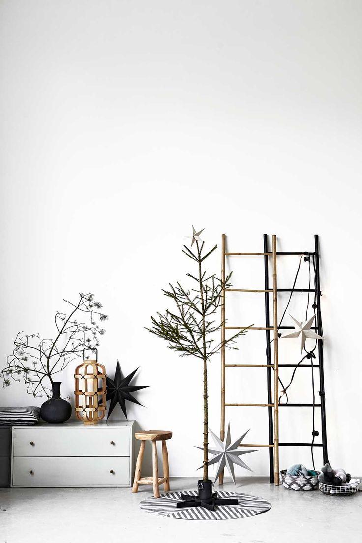 20170417&094041_Bamboeplant Badkamer ~   over Bamboe Ladders op Pinterest  Bamboe, Ladders en Bamboe Ambachten