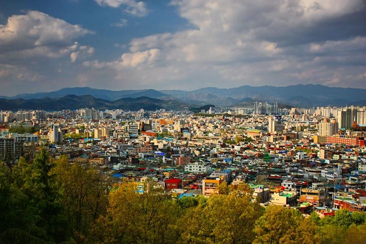 Daegu South Korea  City new picture : Daegu, South Korea | Daegu | Pinterest