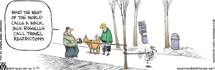 Non Sequitur by Wiley Miller for Mar 25, 2017 | Read Comic Strips at GoComics.com