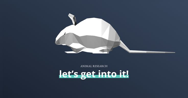 COBAY.ES is an information site about animal research. It explains its role in research and highlights the alternatives currently used or in development...