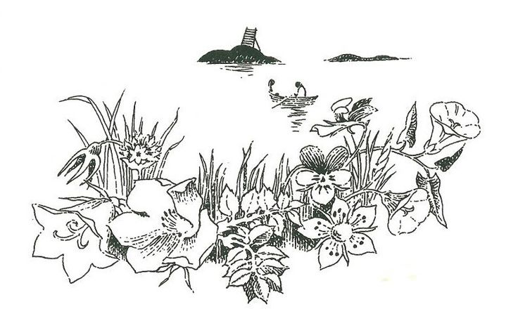 Tove Jansson's The Summer Book