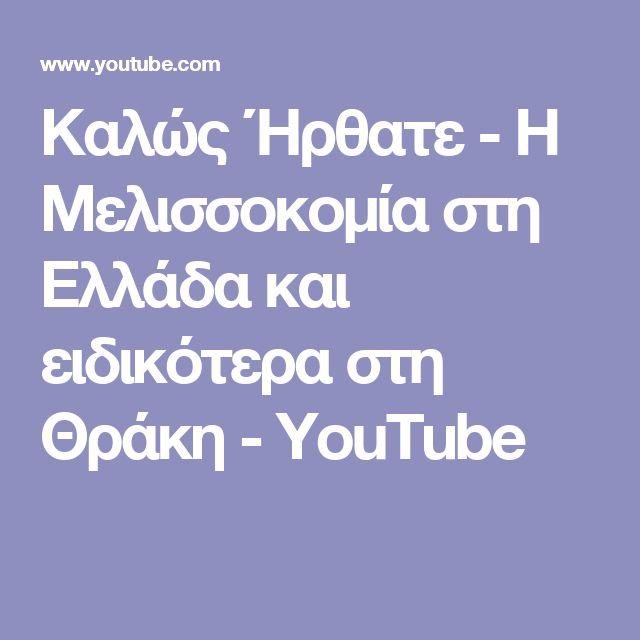 Καλώς Ήρθατε - Η Μελισσοκομία στη Ελλάδα και ειδικότερα στη Θράκη - YouTube