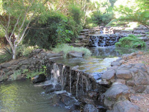 @Jacqui Ridge Japanese Gardens at Bundaberg Botanical Gardens #Queensland #Australia