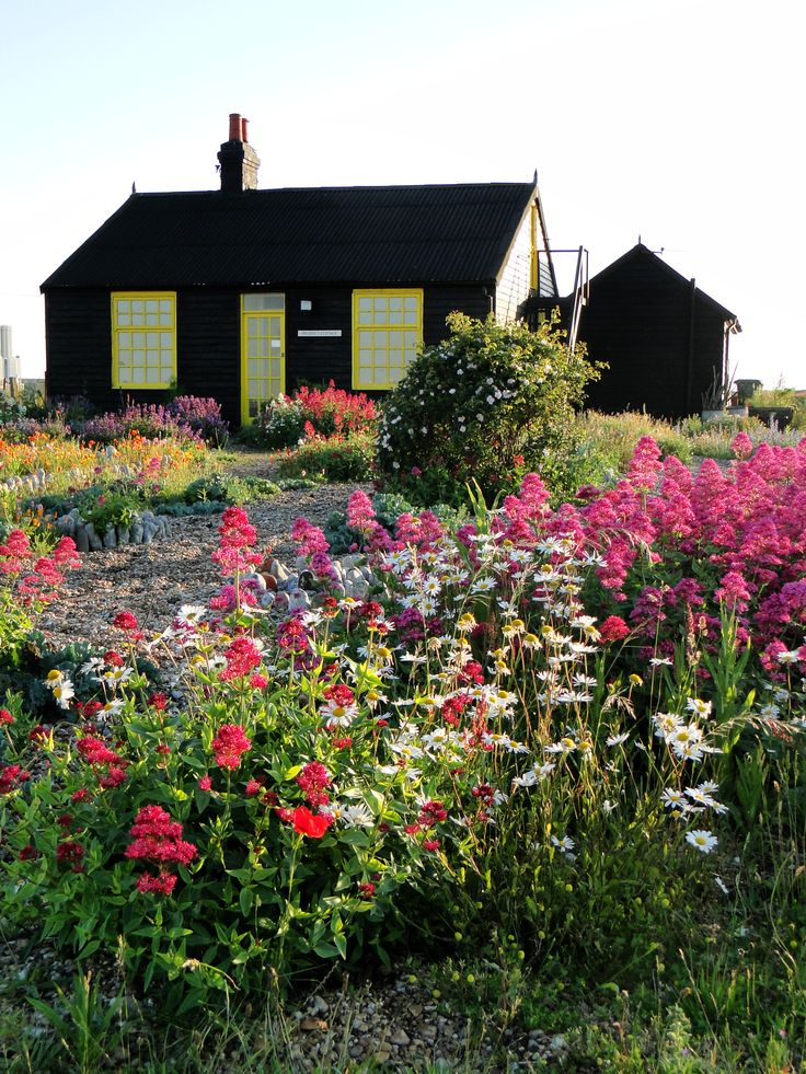 Wildflower Garden Ideas wildflower patch Derek Jarmans House Garden Dungeness England