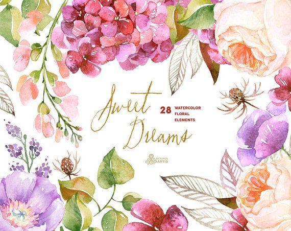 甘い夢: 28 水彩要素、アジサイ、バラ、ポピー、結婚式招待状、花、グリーティング カード、diy クリップ アート、紫色の花