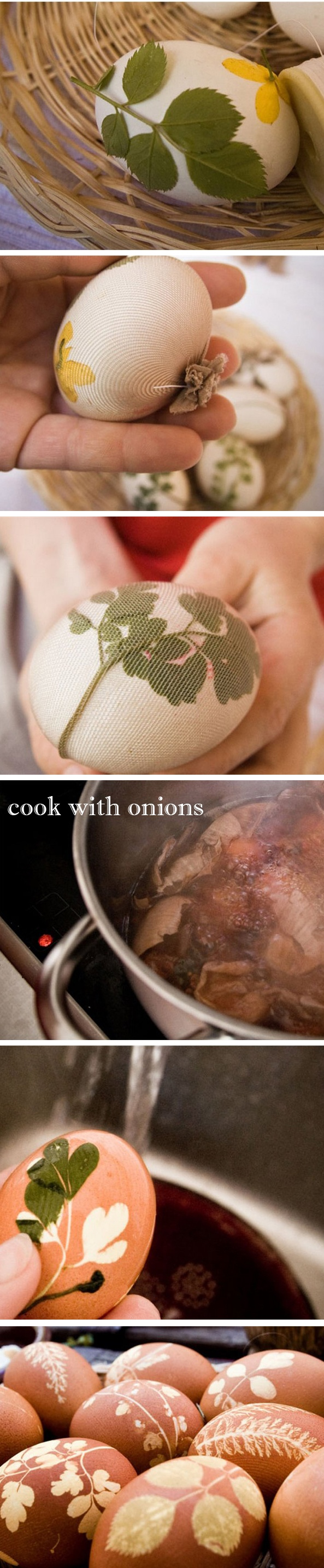 Found this in russian, it took me a while to figure out it were onions. But that should be obvious now :p thank u photoshop ;)