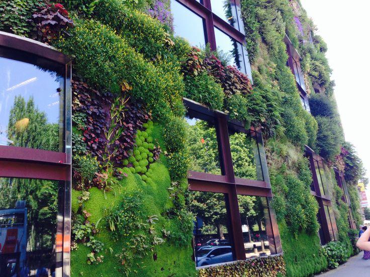 KINSA in Paris - Vertical Garden