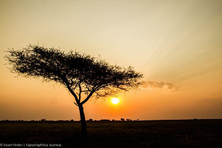 Landscape Photography by Stuart parker | CapturingAfrica Journeys - Kalahari Sunset | Botswana