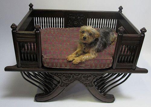 Now that's a fancy dog bed! Antique 19 C 1800's Victorian Dog/Cat/Pet Bed Italian Savonarola Style! http://r.ebay.com/TJJgiK