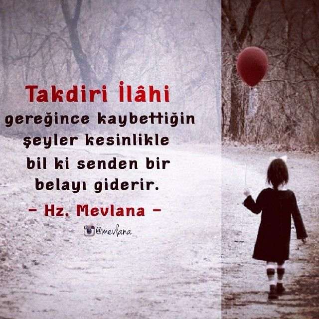 ELİF GÖNLÜM @elifgonlum Instagram photos | Websta (Webstagram)