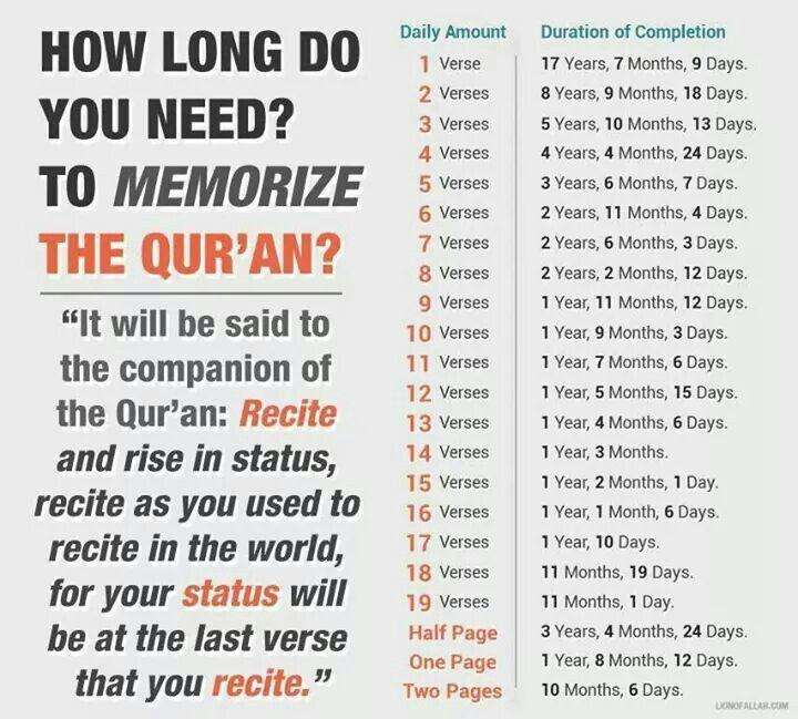 Memorize the Quran