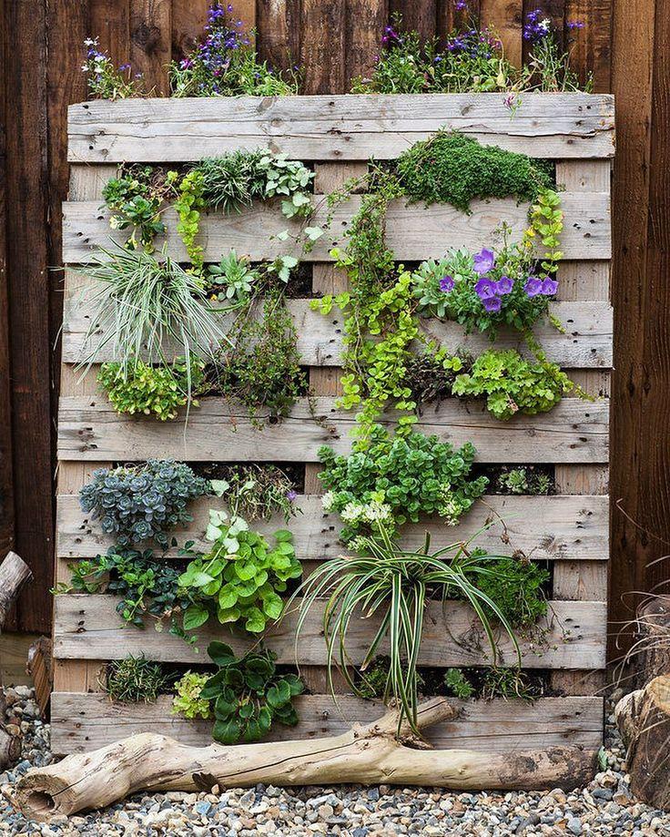 Вертикальный сад на деревянной опоре. В качестве основы используются деревянные паллеты. Суть приема в том, что растения проглядывают через поперечные планки. Выглядит очень красиво!