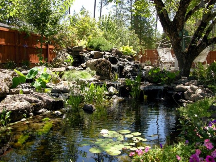435 best images about pond and garden landscaping on for Large outdoor fish ponds