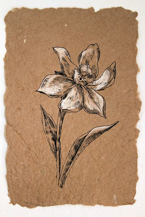 Flower Drawing. White Narcissus. Classis Style Original Artwork. Botanical Art. Black Ink Drawing on Handmade Paper. House Decor