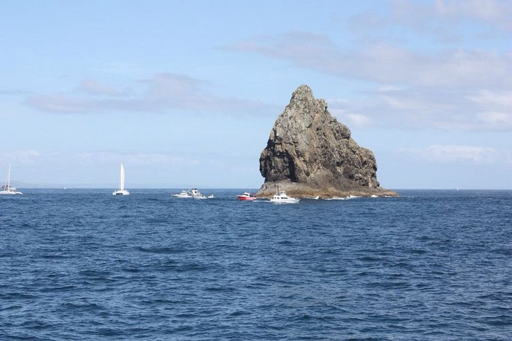 The Bay of Islands!