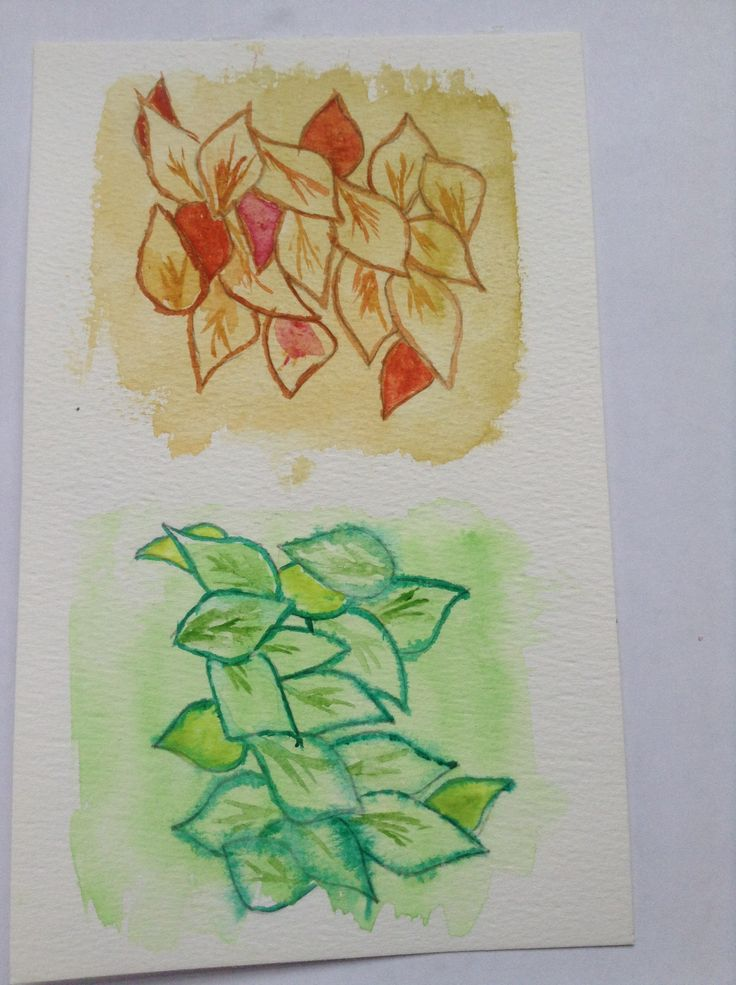 Leaf project - medium watercolour