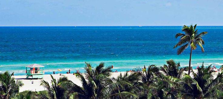 South Beach è la parte più a sud di Miami Beach.  Luogo adorato dai fotografi di moda stregati dagli scenari e dalla luce favolosi, South Beach è diventata uno dei più riconoscibili ritrovi del jet-set di fine Novecento.  Facile imbattersi in veri e propri set fotografici all'aperto con fotografi famosissimi che fotografano altrettanto famosissime modelle.  Oppure fotografi meno famosi che effettuano servizi fotografici a giovani belle e sconosciute ragazze.