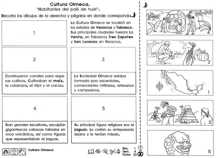 La Cultura Olmeca se localizó en los estados de Veracruz y Tabasco. Sus principales ciudades fueron: La Venta, en Tabasco; Tres Zapotes y San Lorenzo.