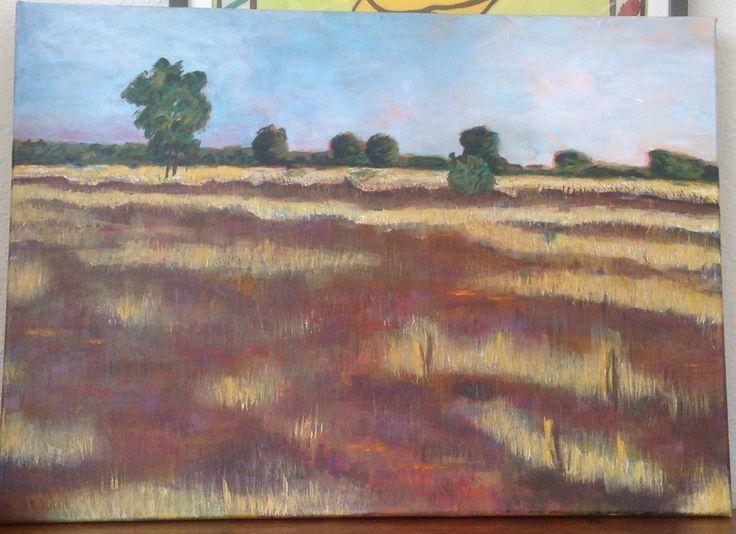 Heide landschap