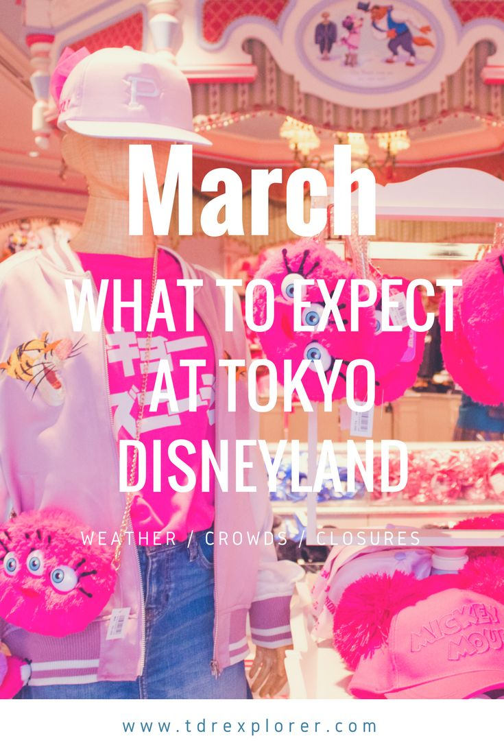What to expect at Tokyo Disneyland & Tokyo DisneySea for the month of March. Including crowds, closures, merchandise, and weather.