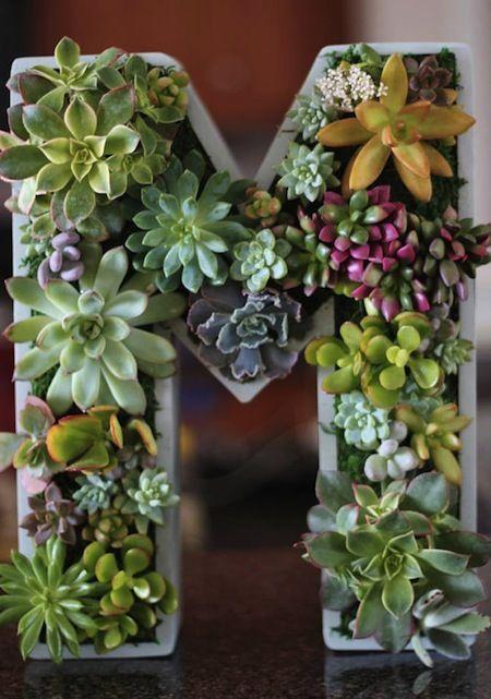 Monogram Planter!  Let's hear it for the letter M!  Plant A Vertical Succulent Garden