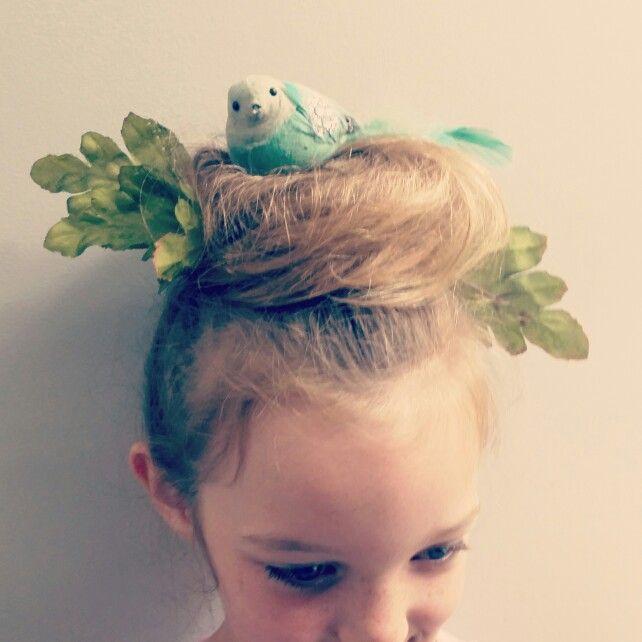 Crazy Hair Day Birds nest hair