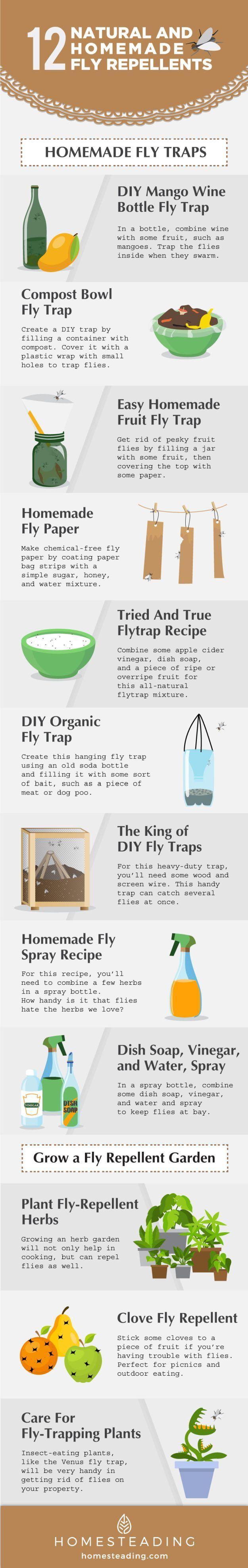 best 25 get rid of flies ideas on pinterest repel flies