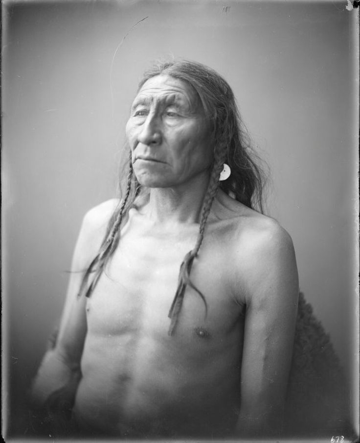 A portrait of Striking Bear, a Crow man. Collection Richard Throssel. Date Original: 1902-1933. University of Wyoming. American Heritage Center.