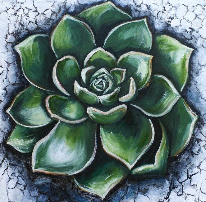 The Cactus Rose - by Julie Sneeden