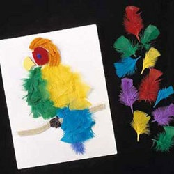 feathers: Feather Crafts, Feather Art, Kiddo Crafts, Feathers Crafts, Kids Crafts, Craft Ideas, Kid Crafts, Arts & Crafts