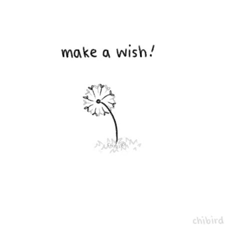 I hope your wish come true this weekend. #Breathe #Right #With  #your  #Soul…