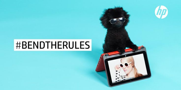 The HP x360 in tent mode. Barkley the Pom in stand mode. #BendTheRules