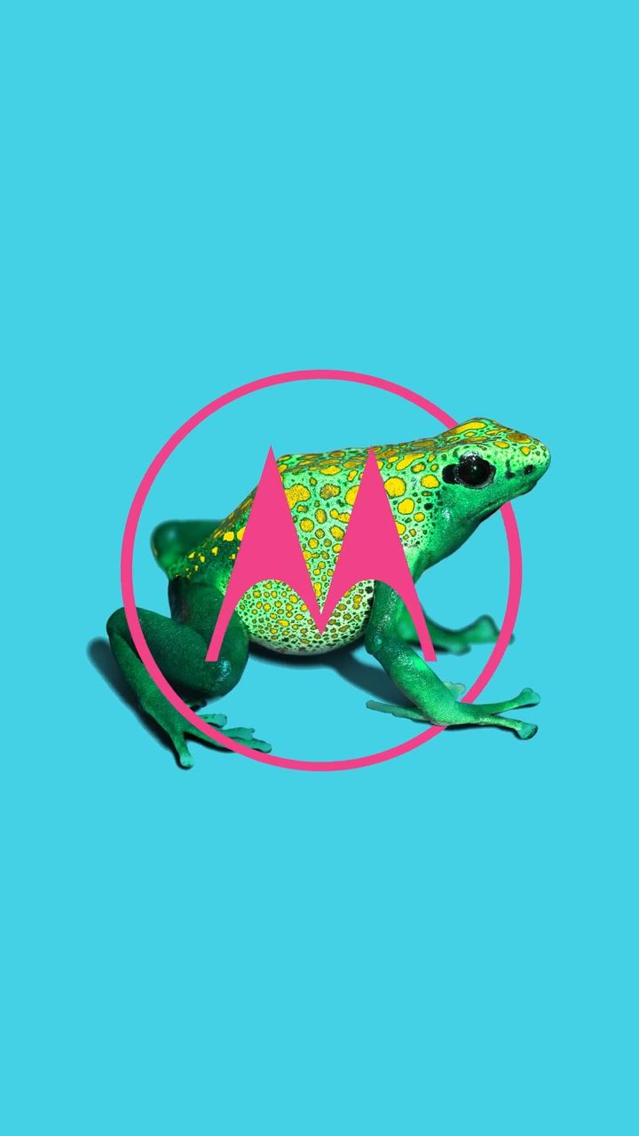 Pin De Planet Wallpaper Em Motorola Logo Wallpapers Papel De Parede Para Telefone Papel De Parede Celular Papeis De Parede