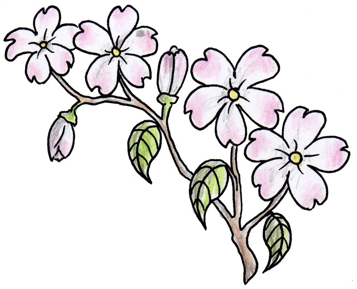 Pink Flowers Tattoo Design #flower #pink #tattoo # ...